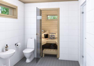 ES/PS mallien sauna, tervaleppä.